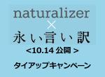 title_naturalizer