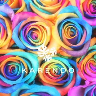 「KARENDO 母の日期間限定SHOP」が5月10日(木)〜5月13日(日)の期間限定でOPEN!!