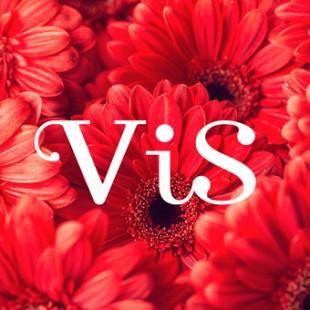 「Vis」が3月15日(金)にリニューアルオープン!